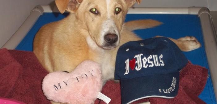 mercy-jesus-hat