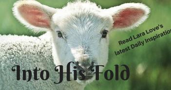 into His Fold www.walkbyfaithministry.com