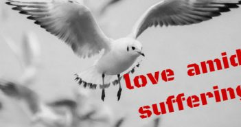 love amid suffering