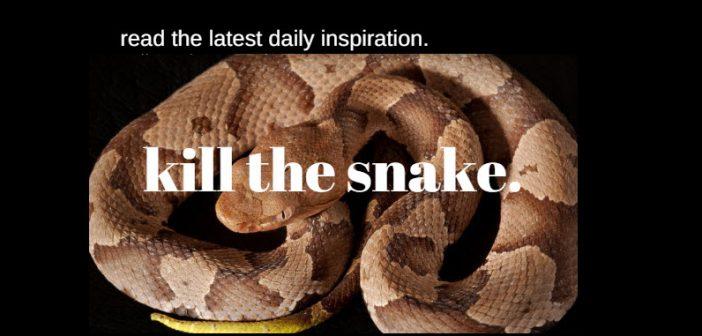 kill the snake