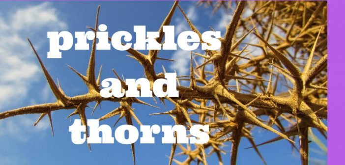 prickles and thorns