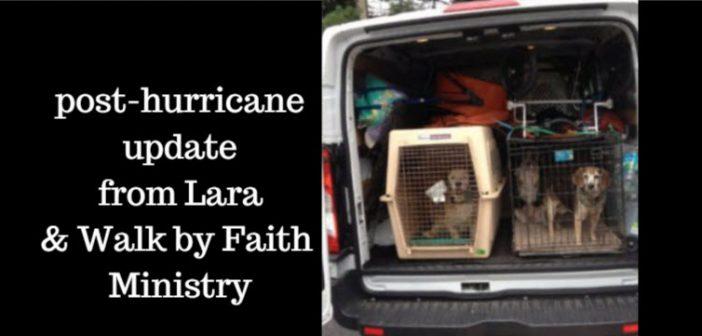 post hurricane update from Lara