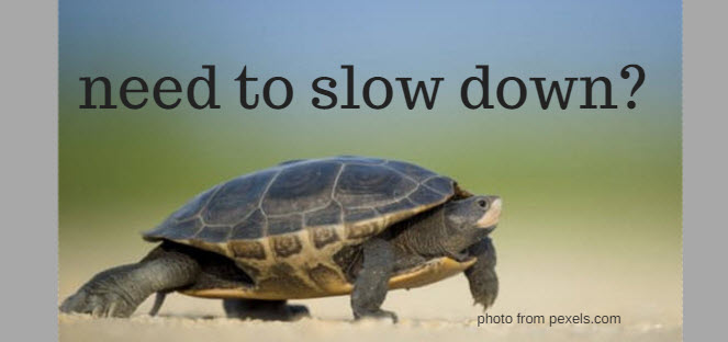 Need to Slow Down?