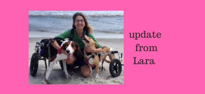update from lara