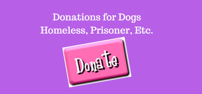 Donations for Dogs, Homeless, Prisoners Etc.