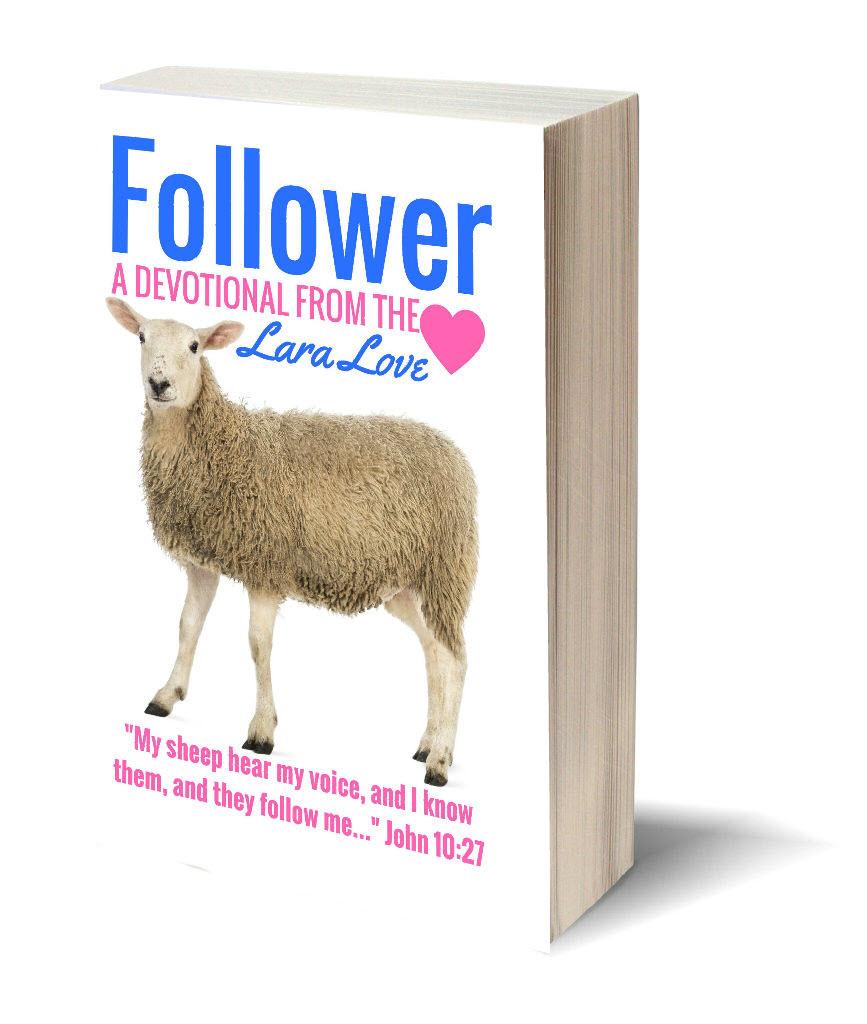 follower book cover 3d