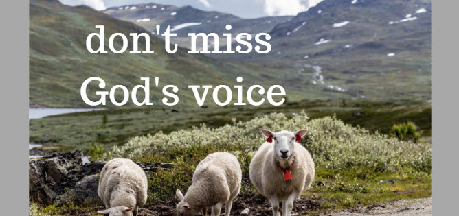 don't miss god's voice