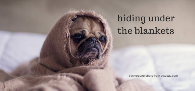 hiding under the blankets pixabay