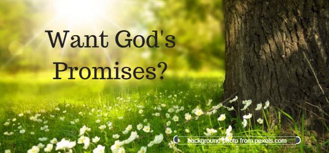 want god's promises
