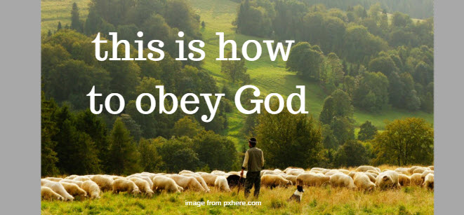 this is how to obey God