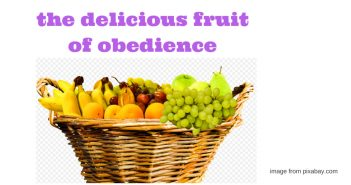 delicious fruit of obedience