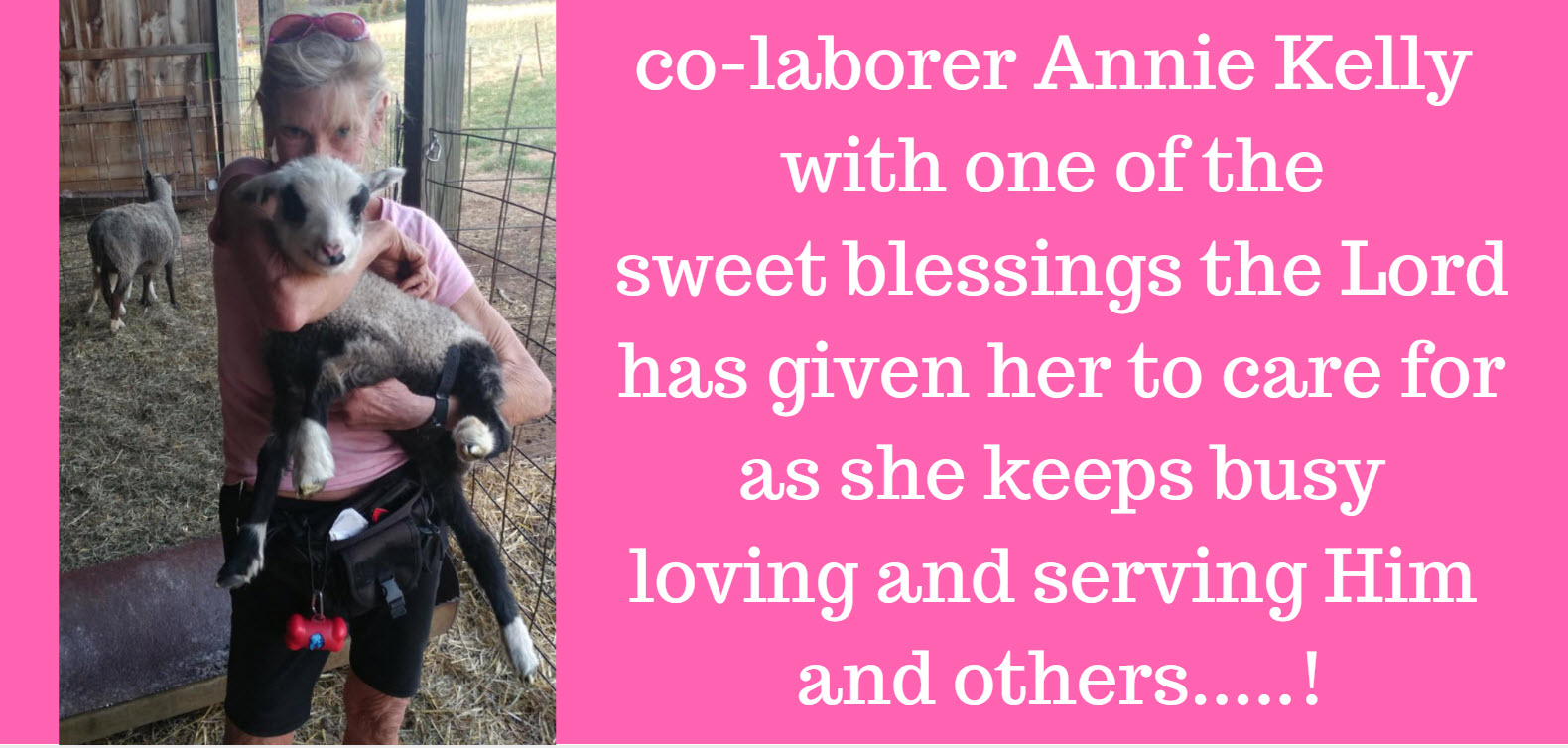 annie kelly with lamb