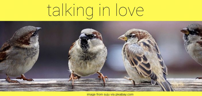 talking in love