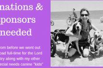 donations & sponsors needed