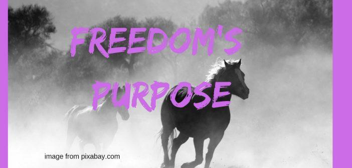 freedom's purpose