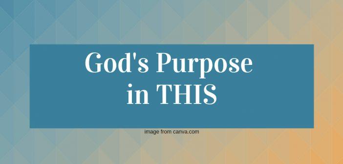 gods purpose in this