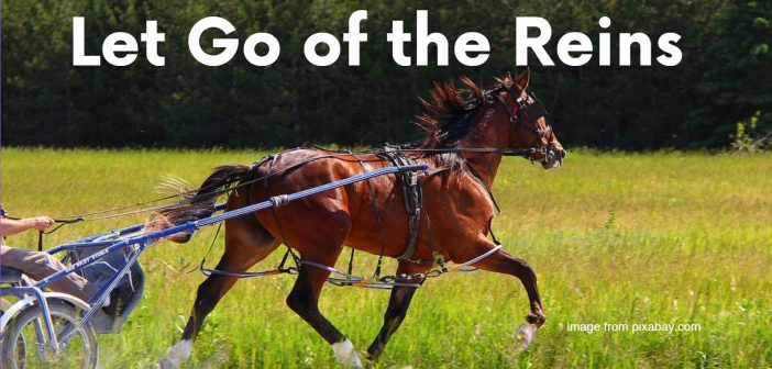 let go of the reins