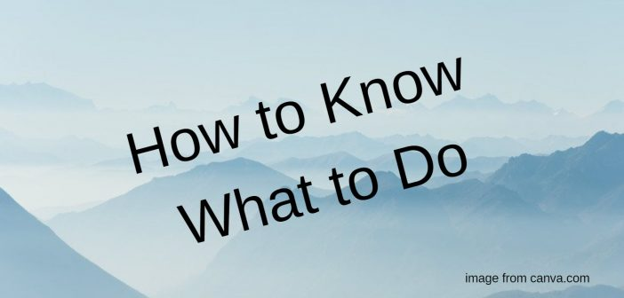 how to know what to do